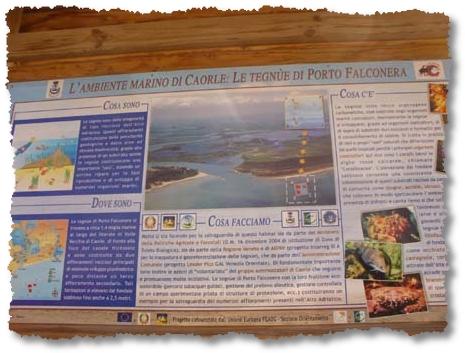 le Tegnue di Porto Falconera a Caorle